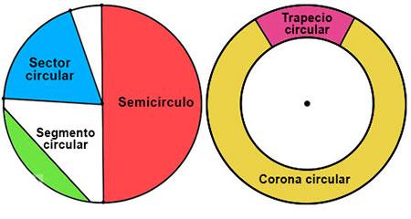 Elementos de un círculo.