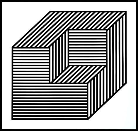 Obra de Sol LeWitt: cubo representado con líneas paralelas en distintas direcciones.