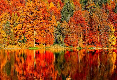 Fotografia con colores de gama cálida.
